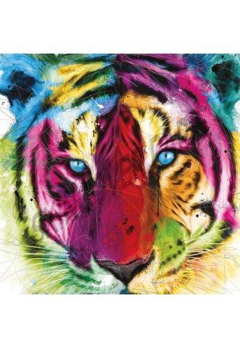 Tiger by Murciano